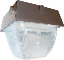 RAB Lighting VAN5S150 - VANDALPROOF 12  X 12  CEILING 150W HPS 120V BRONZE