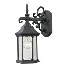 Elk Cornerstone 8611EW/65 - Spring Lake 1 Light Exterior Coach Lantern In Ma
