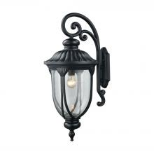 ELK Lighting 87102/1 - Derry Hill 1-Light Outdoor Wall Lamp in Matte Black